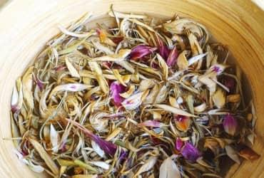 Tác dụng thần kỳ của hoa Atiso sấy khô đối với sức khỏe con